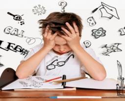 Leren met herhaling; de cognitieve belasting theorie